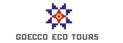 Goecco tours iceland logo