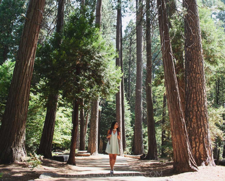parco Yosemite