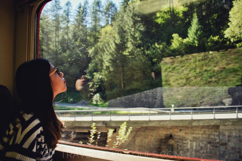 vista dal trenino rosso