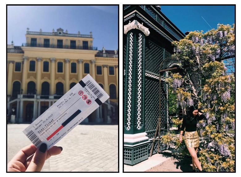 Visitare Vienna: Schonbrunn