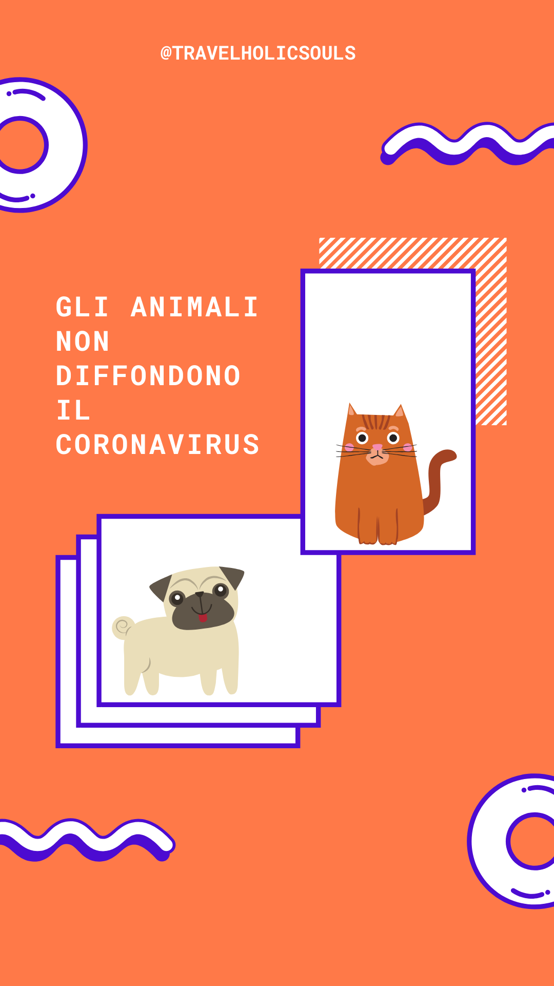 coronavirus animali