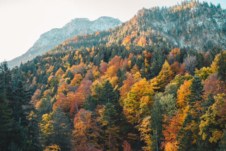 Baviera in autunno